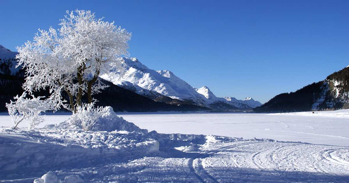 frozen lake perfect for cross-country skiing Maloja-Sils